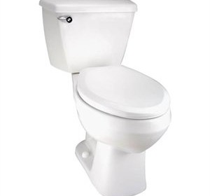 Mansfield 34049 Alto Pro Toilet Elongated Ada Bowl Only