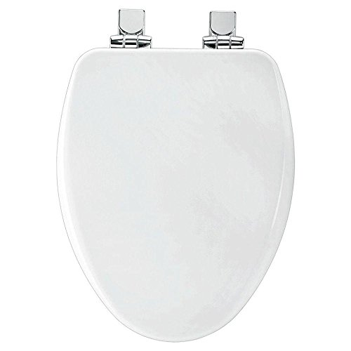 bemis 19170chsl 000 slow close elongated closed front toilet seat white